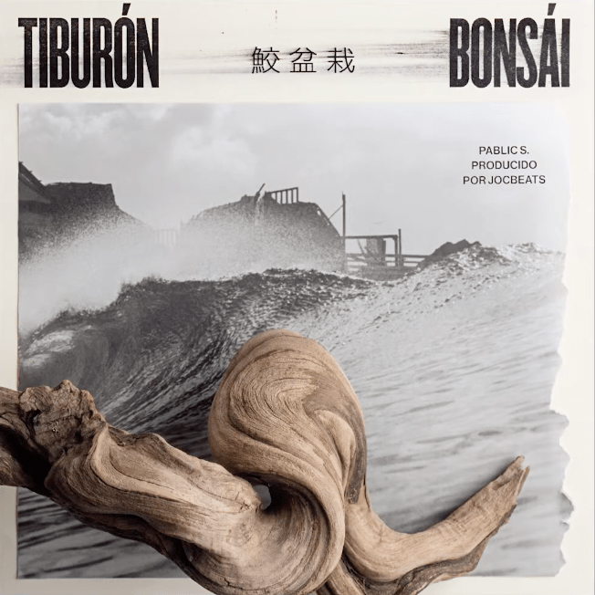 Pablic S – «Tiburón/Bonsai»